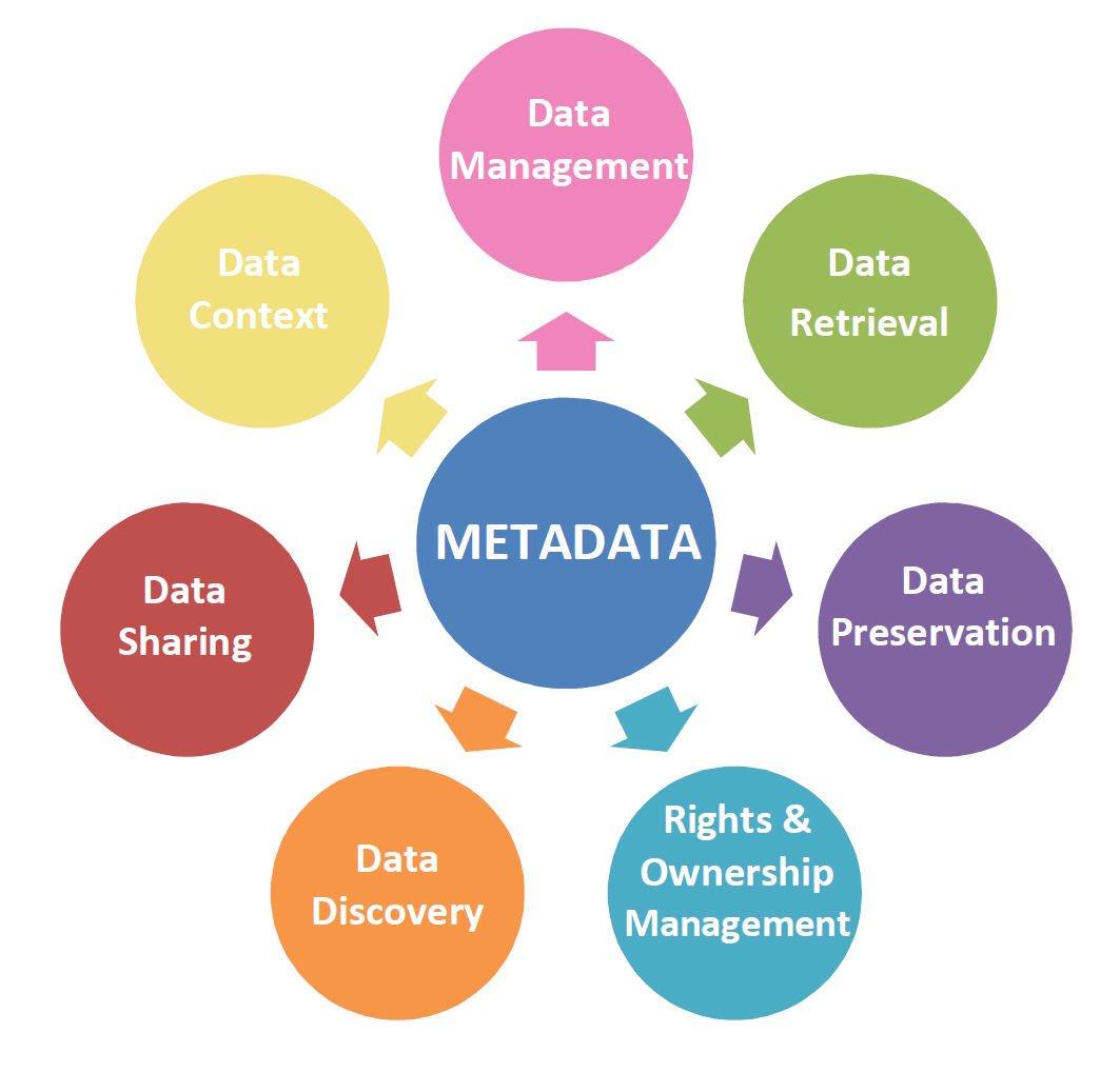 البيانات الوصفية Metadata..